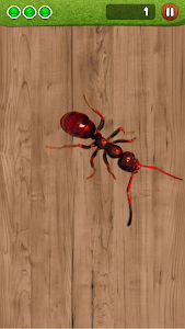 screenshot of Ant Smasher by Best Cool & Fun Games version 9.56