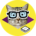 Download Boomerang Pet Photo Booth 1.1.7 APK