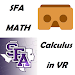 Calculus in Virtual Reality