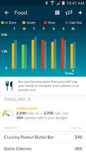 screenshot of Fitbit version Varies with device
