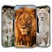 Download Lion King Wallpapers HD 1.0 APK