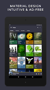 screenshot of Pulsar Music Player - Mp3 Player, Audio Player version 1.9.2