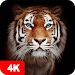 Download Tiger Wallpapers 4K 4.7.9.6 APK