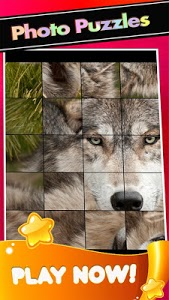 screenshot of wolves Pictures-the wolf Puzzle Game version 1.1.2